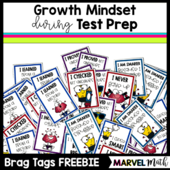 Growth Mindset Brag Tags for Test Prep